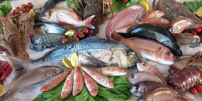 Residui di plastica in mare pericolo a tavola resto al sud - Mare in tavola foggia ...