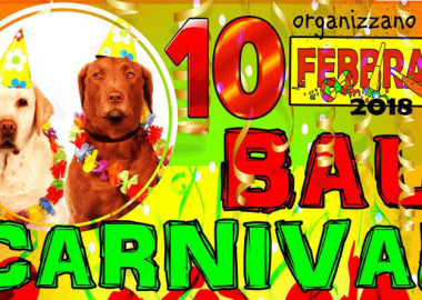 Carnevale animali