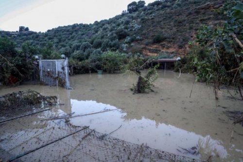 Calamità naturali, bando per gli agricoltori ed enti pubblici siciliani